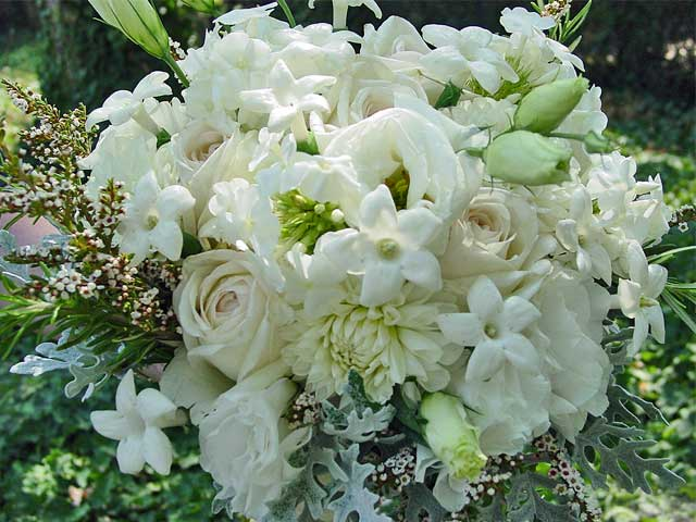 Bridal bouquets by trilliums courtyard florist white summer flowers with touches of fragrant stephanotis mightylinksfo